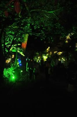 色が変化するLEDライトに照らされた花のみち。幻想的な雰囲気の中、手塚アニメのテーマ曲がメドレーで流れる