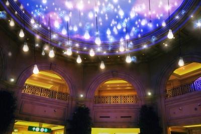 氷の世界の物語の中にあるマーケットをイメージした、ノスタルジックな雰囲気をフィラメント風の電球で演出する