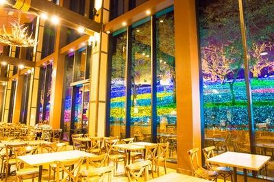 園内中心部にあるレストラン「ワイルドダイニング」では、斜面に向かって大きく開けた窓からイルミネーションを一望できる