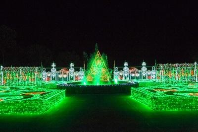 樹木をイメージした緑色のイルミネーションで演出された「イングリッシュガーデン」
