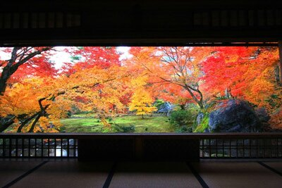 紅葉の赤、苔の緑、岩のコントラストがすばらしい書院内からの眺め(※通常非公開)
