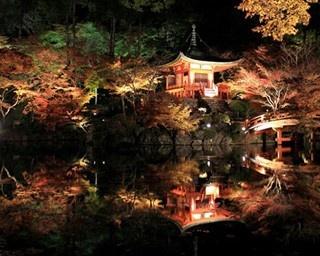 紅葉に包まれた朱塗りの弁天堂が、夜の水面に映る様子は必見