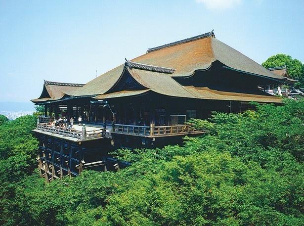 境内では自然美と建築物が織り成す四季折々の絶景を楽しむことができる/清水寺