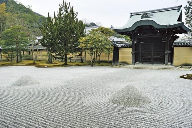 緑と白砂のコントラストが美しい方丈前庭。春には枝垂桜が咲く/高台寺