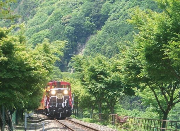嵯峨~亀岡間を保津川渓谷に沿って走る嵯峨野トロッコ列車