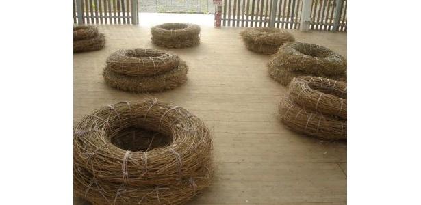 竹の海原内部にはこんなベンチも!