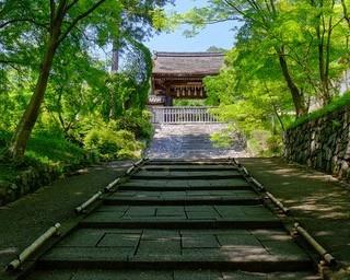 静かに風情ある社寺を巡れる!3分で知る山科エリアまとめ