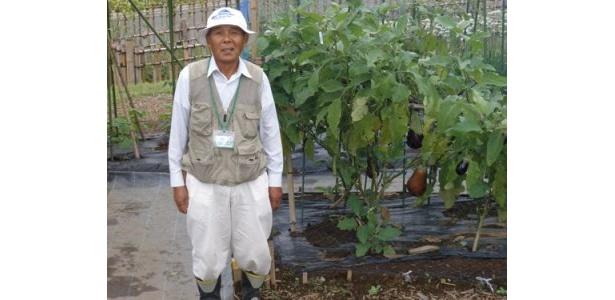 丹精こめて育てた野菜たちと「ひでじい」です。冷夏とはいえ日差しの強かった日々でした。頭が下がります