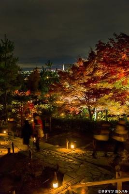 開山堂を背景にした紅葉の境内が見渡せる遊歩道。グラデーションが見事な美しさ!/高台寺