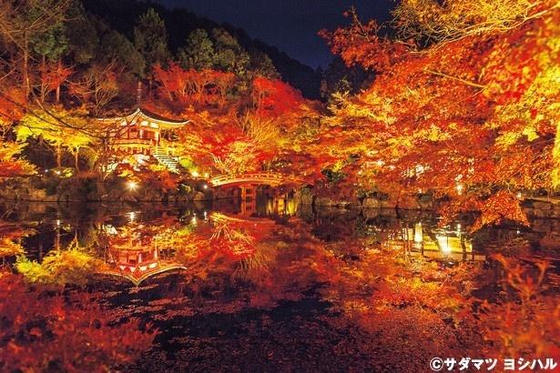 朱塗りのお堂が水面とよく合う弁天堂も紅葉の名所/醍醐寺