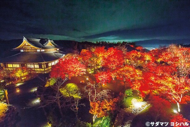 将軍塚青龍殿の西側にある展望台からは、暗闇に浮かび上がる紅葉と遠くに古都の夜景も見下ろせる/将軍塚青龍殿