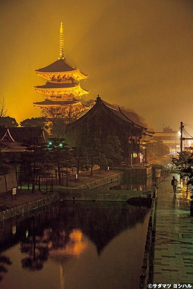 高さ約55mで木造建築日本一の高さを誇る五重塔。暗闇に浮かぶ絢爛な五重塔を紅葉が彩る/東寺