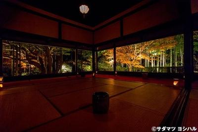 額縁庭園(盤桓園)は、落ち着きある「囲炉裏の間」から見る庭も見逃せない美しさ/宝泉院