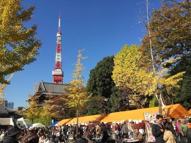 東京の増上寺で開催