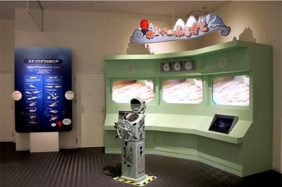 大型モニターでは明太子の親魚「スケトウダラ」を徹底解説
