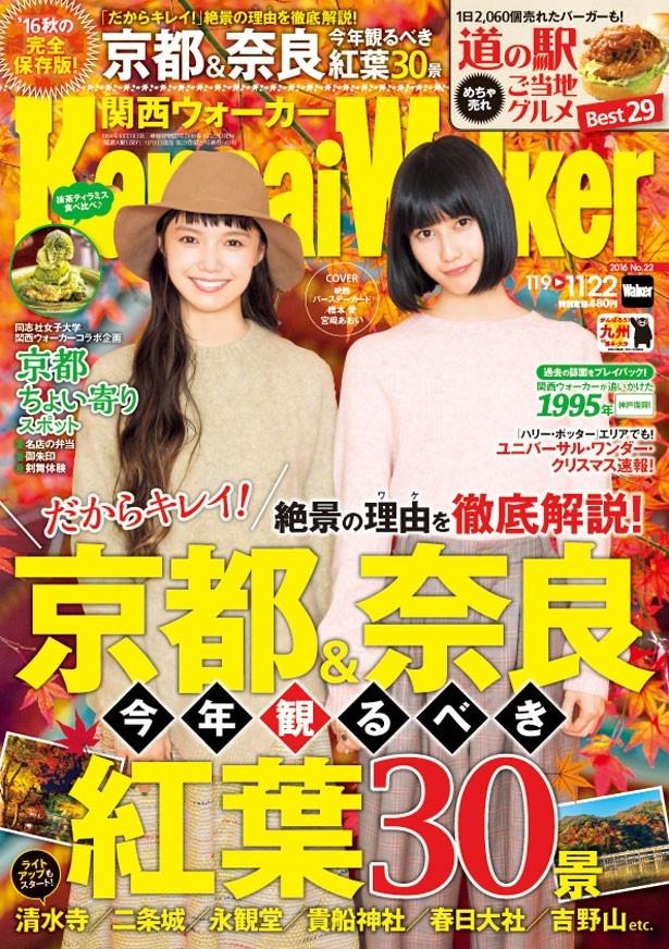 関西ウォーカー最新号は11月8日(火)発売!