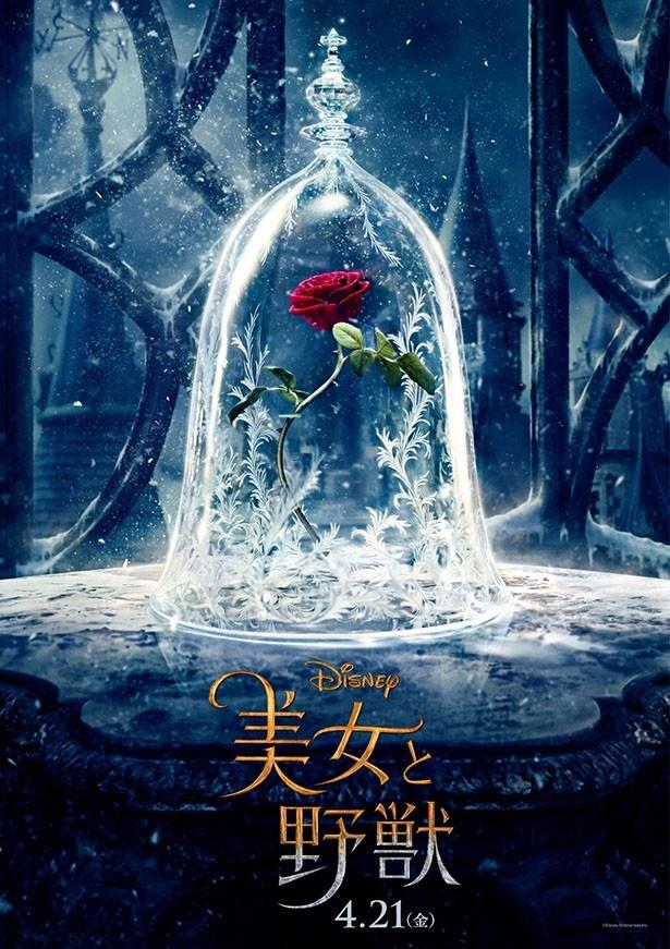 【写真を見る】『美女と野獣』は2017年4月21日(金)公開!