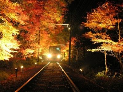 叡山電鉄市原駅〜二ノ瀬駅間の「もみじのトンネル」が今年もライトアップ