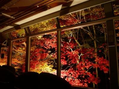 【写真を見る】叡山電車の車窓のすぐそばまで迫る、美しく色づく洛北の紅葉