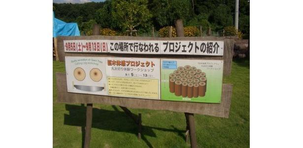 「巨木体感プロジェクト」は9/13(土)まで開催。のこぎりで巨木を切ることができる