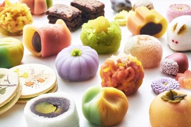 宇治抹茶を100種の京菓子×100種の茶器で楽しむ!