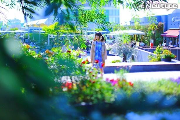 上田麗奈フォトコラム・デパートの屋上からモネの世界へ