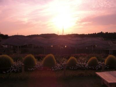 夕暮れの丘は、息を呑むほどの景色が見られます