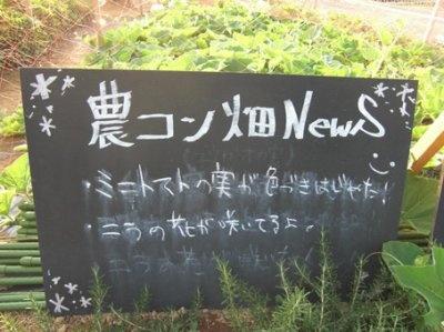 きょうの畑のニュースは…