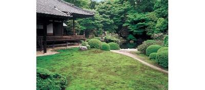 小野小町ゆかりの門跡寺院として知られ、境内には実際にここの水を使って化粧をしていたと言われる「化粧の井戸」などがある/隨心院