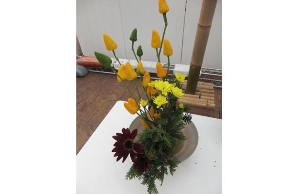 記者が活けた花。トウガラシやキクなど、秋らしい色でできました!