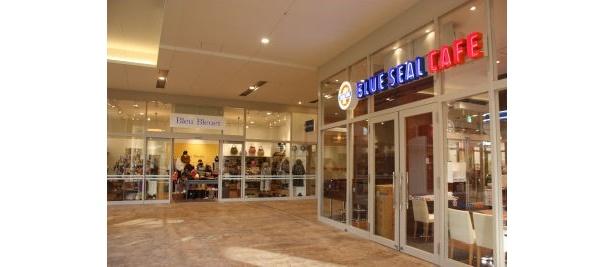 「ブルーシールカフェ」もオープン。天気のいい日は外で食べたい