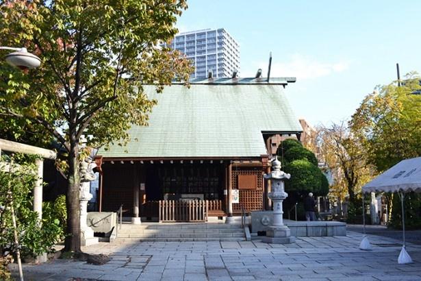 住吉三神や徳川家康の御神霊などが祭られている (「住吉神社」)
