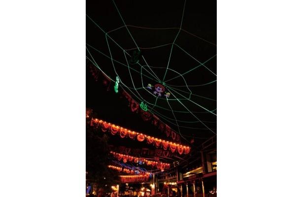 夜はクモの巣がライトアップ