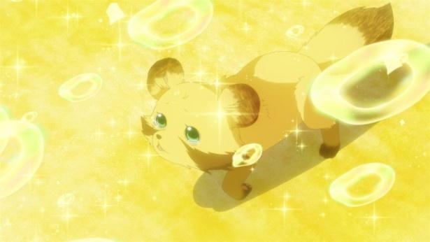 「うどんの国の金色毛鞠」第9話先行カットが到着。ポコ、たぬきに……!?