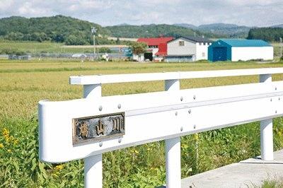 なんと鳩山川も!しっかり整備され用水路の役割をしている