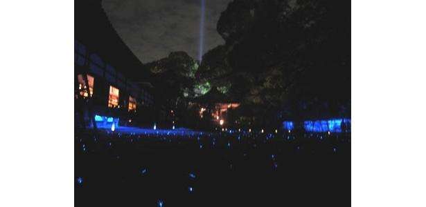 庭園をおおうスギゴケに電球を配した「苔の庭」。青い光がきらめく夜空の星々を連想させる