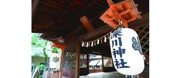 「深川神社」では、9/29(火)に招き猫供養感謝祭も行われる