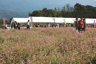 祭りのテント市では菓子や乾そば、ハチミツ、ナシやブドウなど中川村の名産品を販売