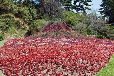 """花でできた、こんな""""立体の富士山""""も!"""