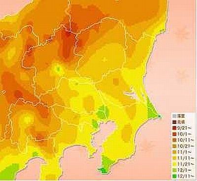 各地でモミジが色づく時期の予想マップはこちら