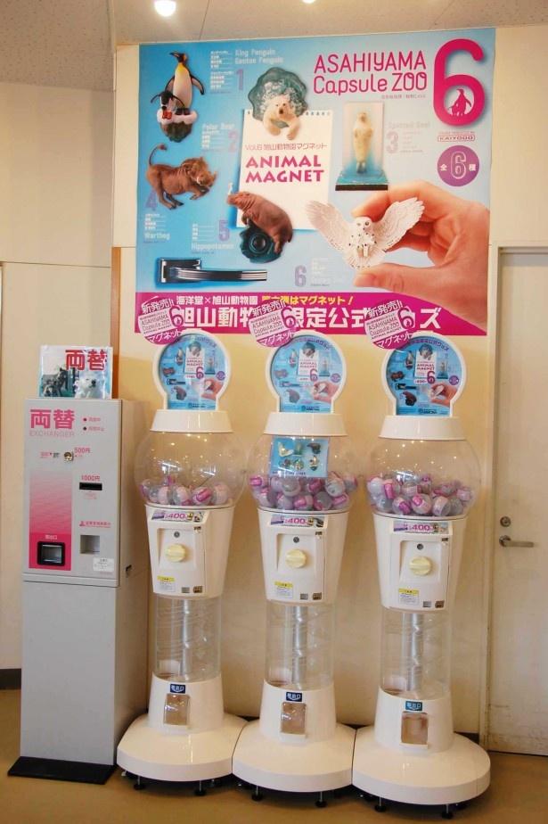 旭山動物園・カプセル販売機