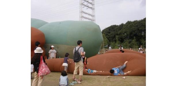 空気入れの最中に、子供たちが後ろ脚のところでボフボフしていたのでした