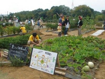 菜園の野菜もすっかり育ちました