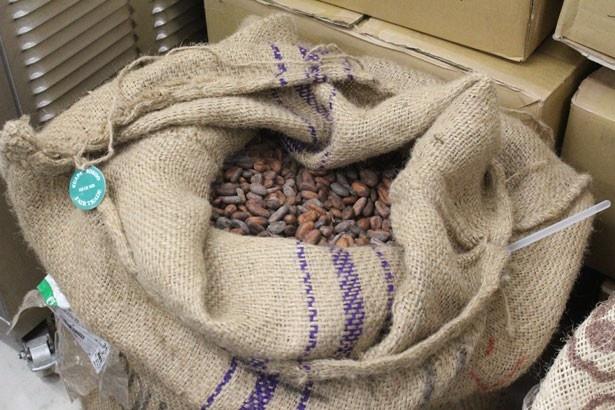 麻袋に入ったカカオ豆を工房内で発見!