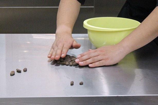 仕入れたカカオ豆は状態を確認し、均一に焙煎するため大きさを選別する