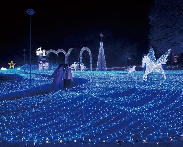 心と身体の癒しの森 るり渓温泉 ポテポテパークで開催中の「京都イルミエール 天空の森~希望の灯火~」