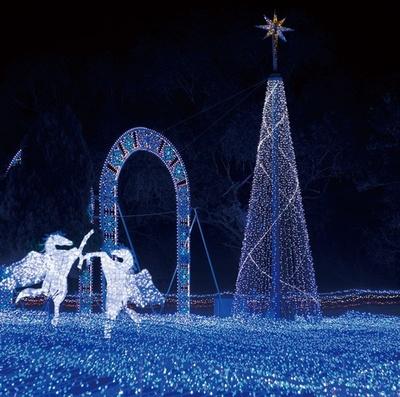 メイン会場にある高さ約10mのツリー。星のオーナメントとストレートライトで装飾!/心と身体の癒しの森 るり渓温泉 ポテポテパーク