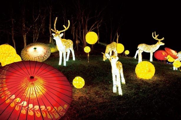 竹などを使った和モダンな和傘ライトアップ。どことなく温かい光に包まれる!/心と身体の癒しの森 るり渓温泉 ポテポテパーク