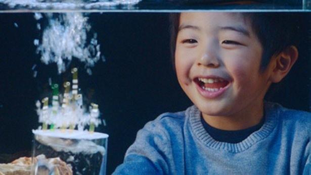 フィルムで作られたチンアナゴが気泡とともに踊り出す!男の子も満面の笑みに
