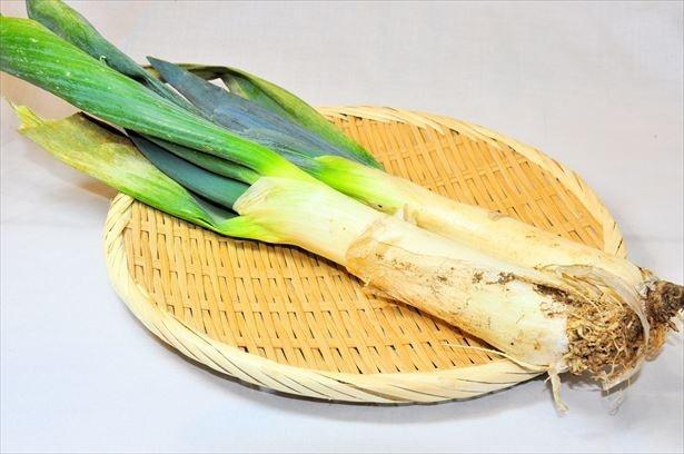 """【写真を見る】""""下仁田葱""""は、短く太い軟白部が特徴。鍋物に最適な葱として高い人気がある"""